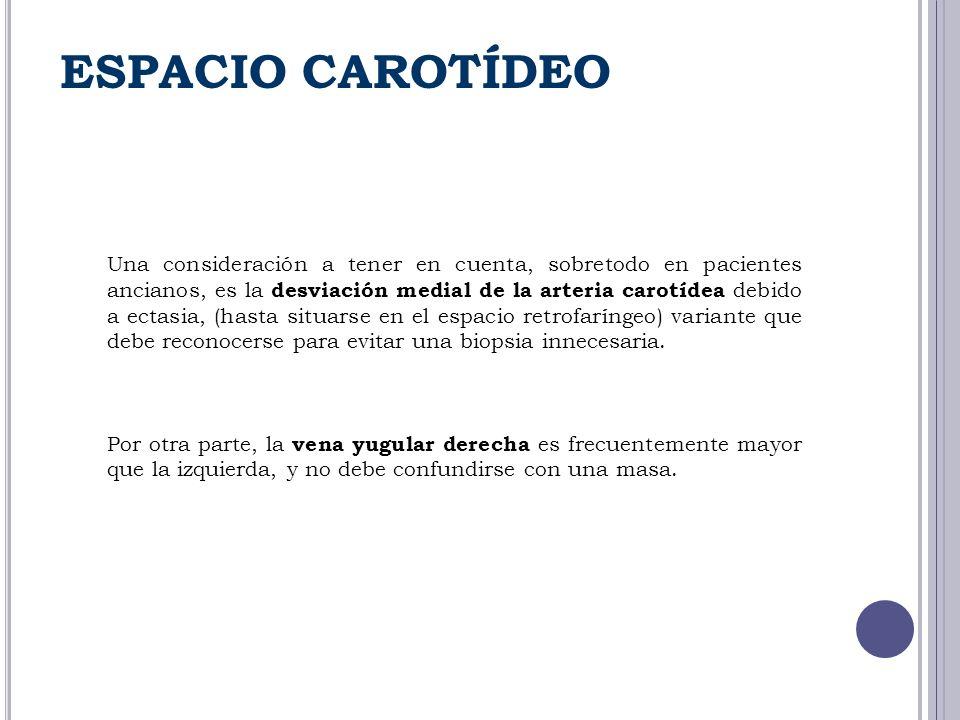 ESPACIO CAROTÍDEO