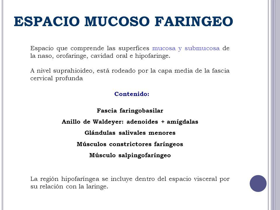ESPACIO MUCOSO FARINGEO