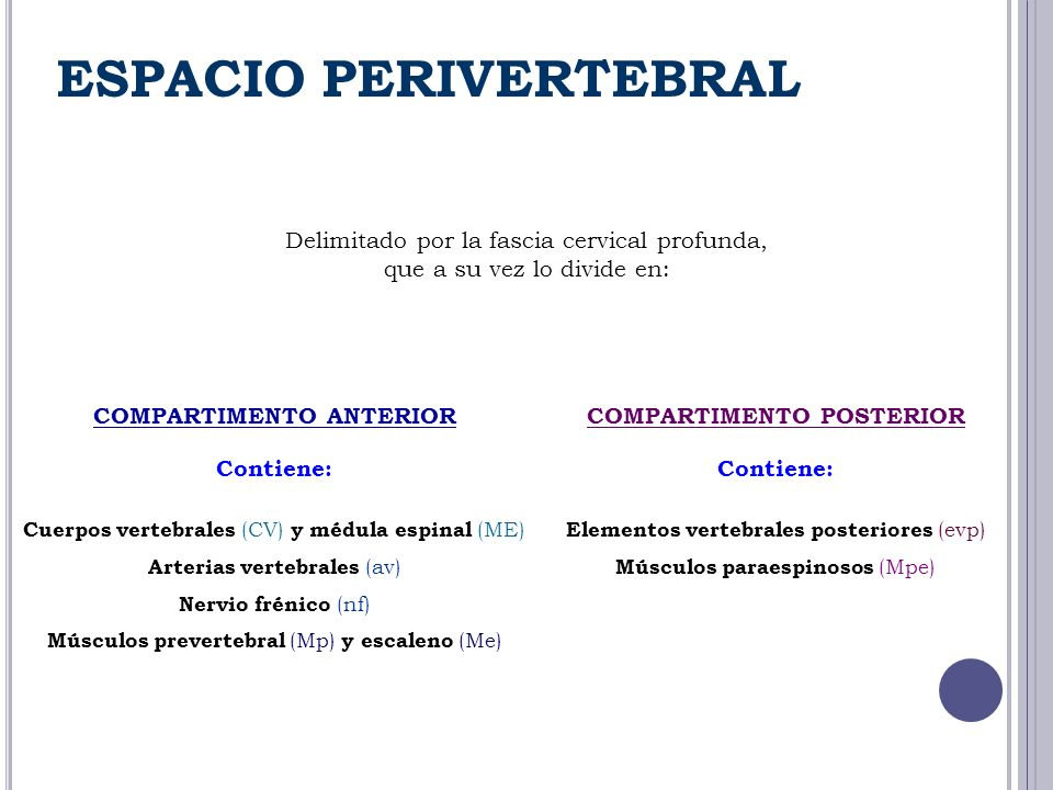 ESPACIO PERIVERTEBRAL