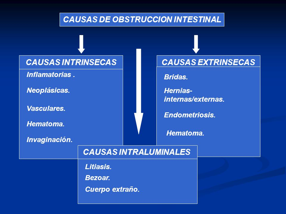 CAUSAS DE OBSTRUCCION INTESTINAL CAUSAS INTRALUMINALES