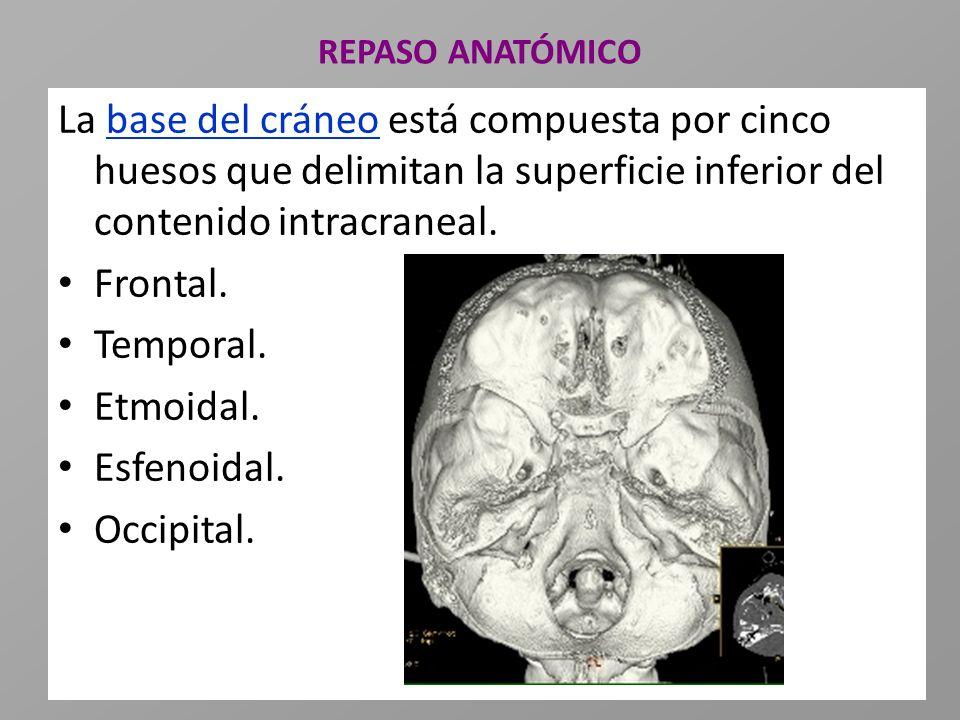 REPASO ANATÓMICO La base del cráneo está compuesta por cinco huesos que delimitan la superficie inferior del contenido intracraneal.