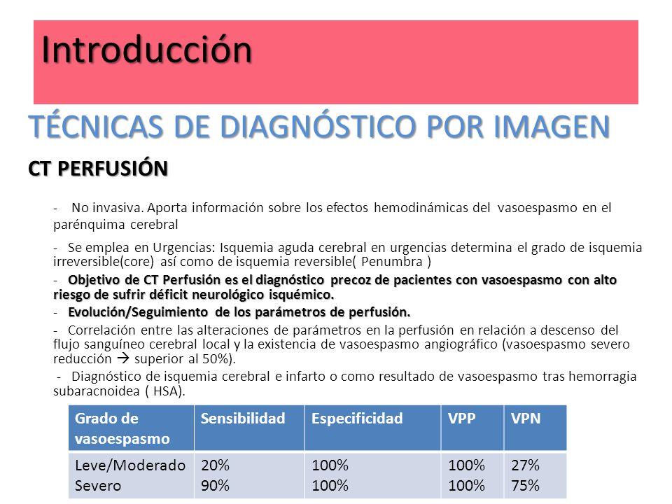Introducción TÉCNICAS DE DIAGNÓSTICO POR IMAGEN CT PERFUSIÓN