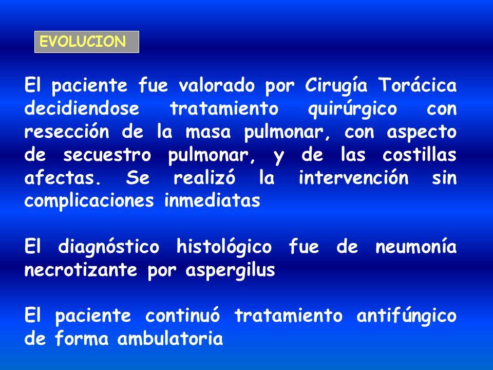 El diagnóstico histológico fue de neumonía necrotizante por aspergilus