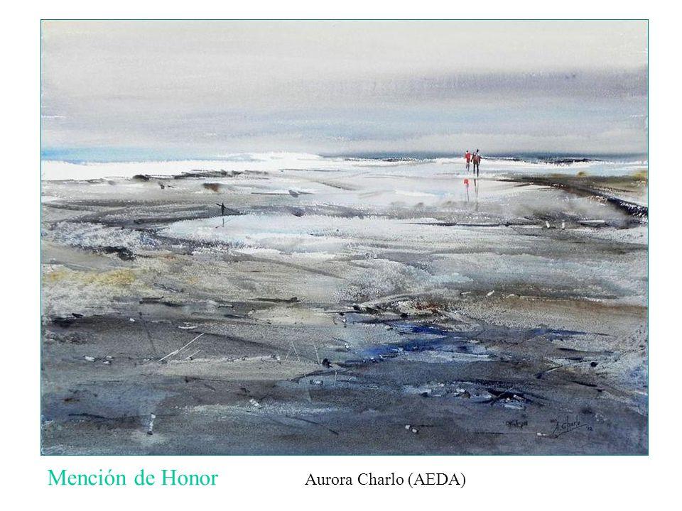 Mención de Honor Aurora Charlo (AEDA)