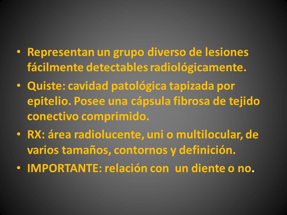 Representan un grupo diverso de lesiones fácilmente detectables radiológicamente.