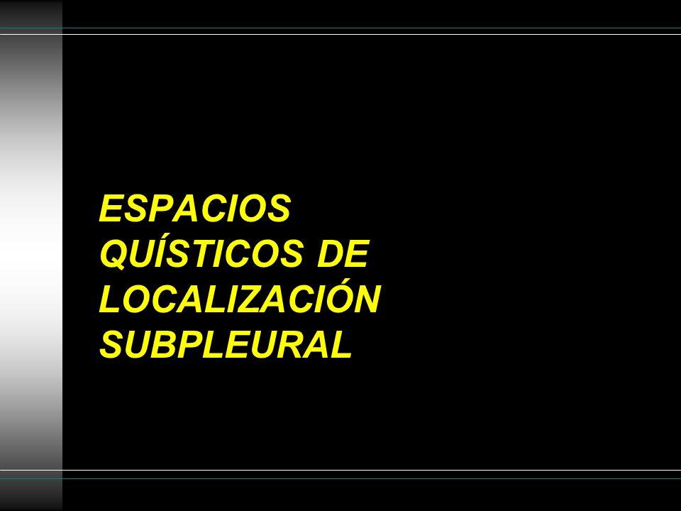 ESPACIOS QUÍSTICOS DE LOCALIZACIÓN SUBPLEURAL