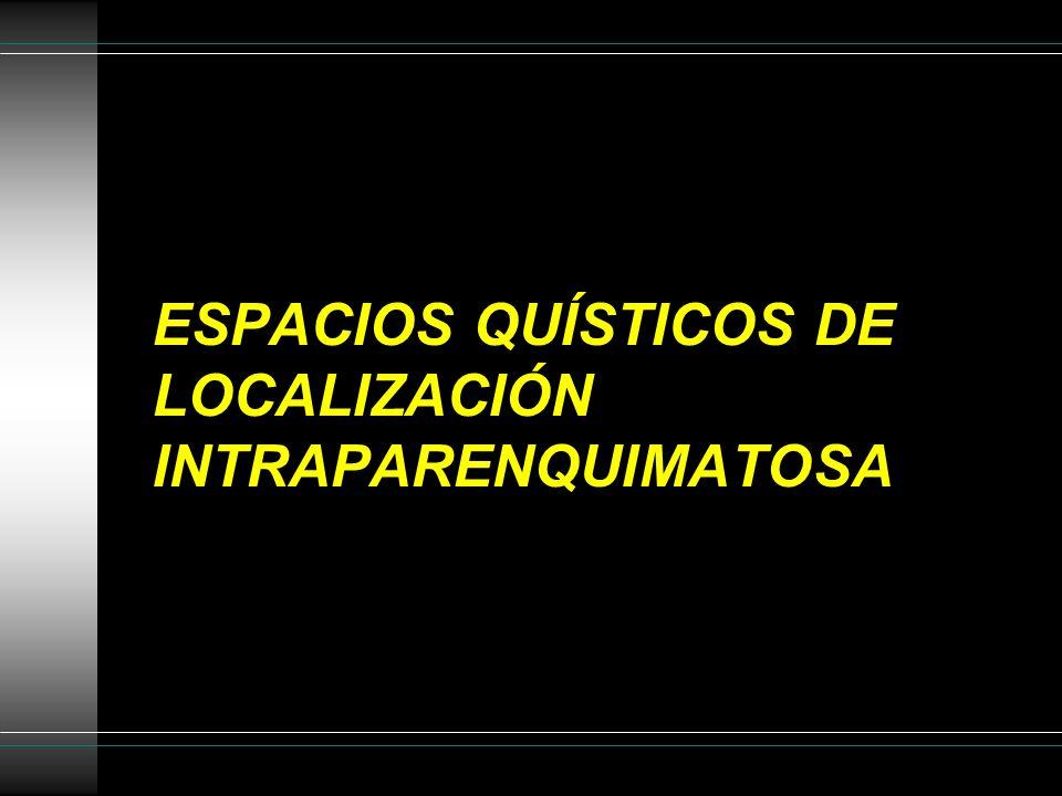 ESPACIOS QUÍSTICOS DE LOCALIZACIÓN INTRAPARENQUIMATOSA