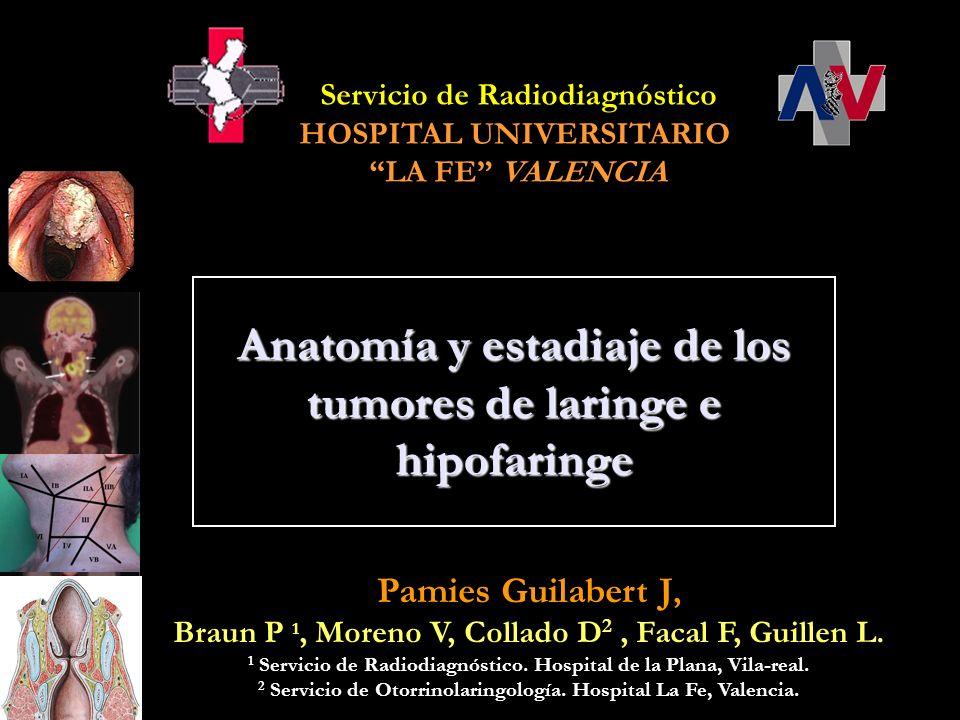 Anatomía y estadiaje de los tumores de laringe e hipofaringe