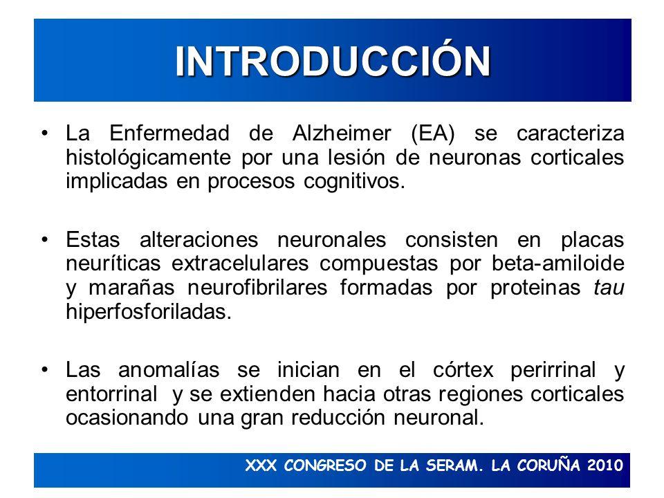 INTRODUCCIÓN La Enfermedad de Alzheimer (EA) se caracteriza histológicamente por una lesión de neuronas corticales implicadas en procesos cognitivos.