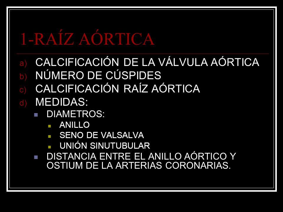1-RAÍZ AÓRTICA CALCIFICACIÓN DE LA VÁLVULA AÓRTICA NÚMERO DE CÚSPIDES