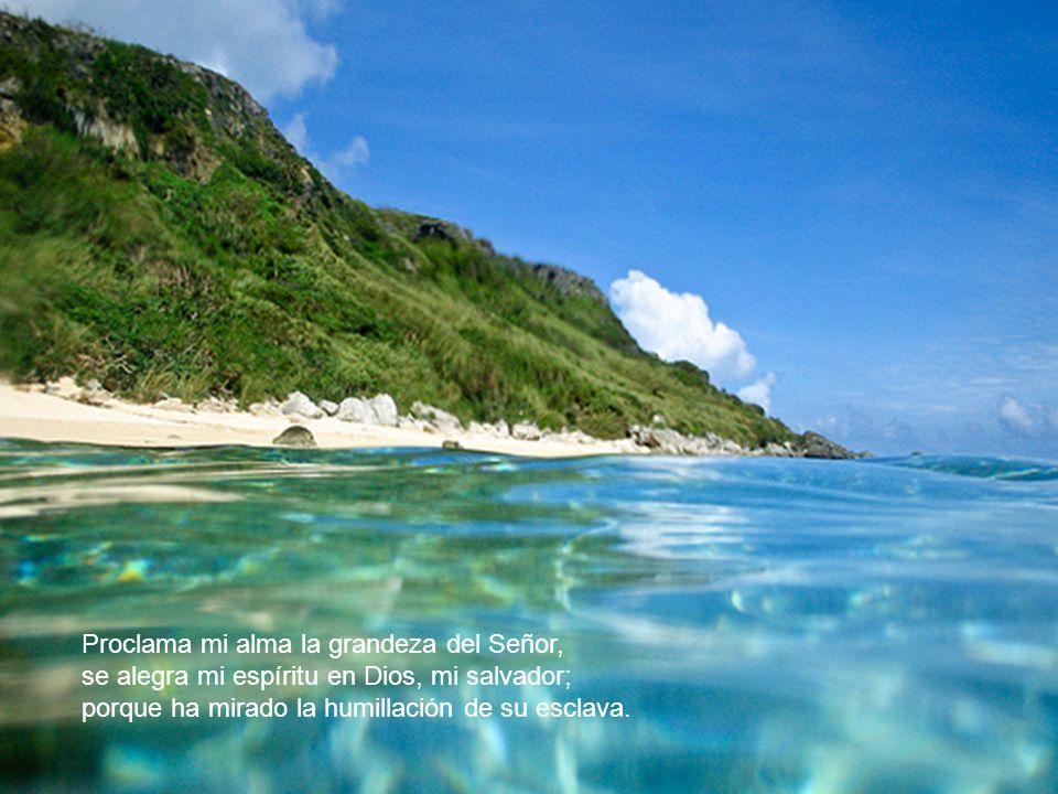 Proclama mi alma la grandeza del Señor,