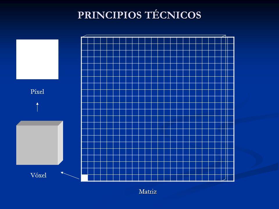 PRINCIPIOS TÉCNICOS Píxel Vóxel Matriz