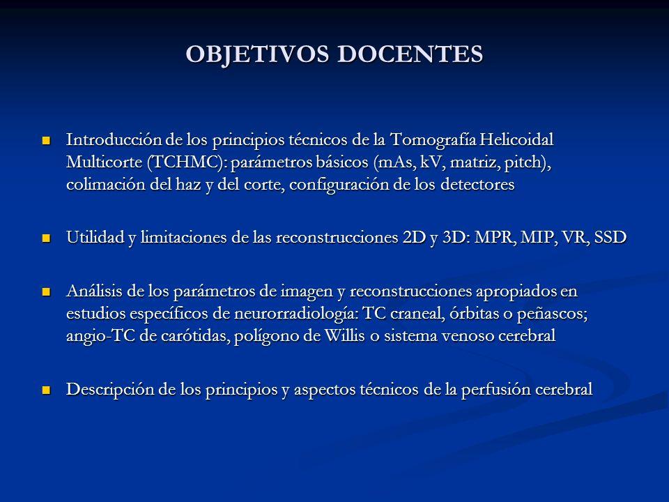 OBJETIVOS DOCENTES