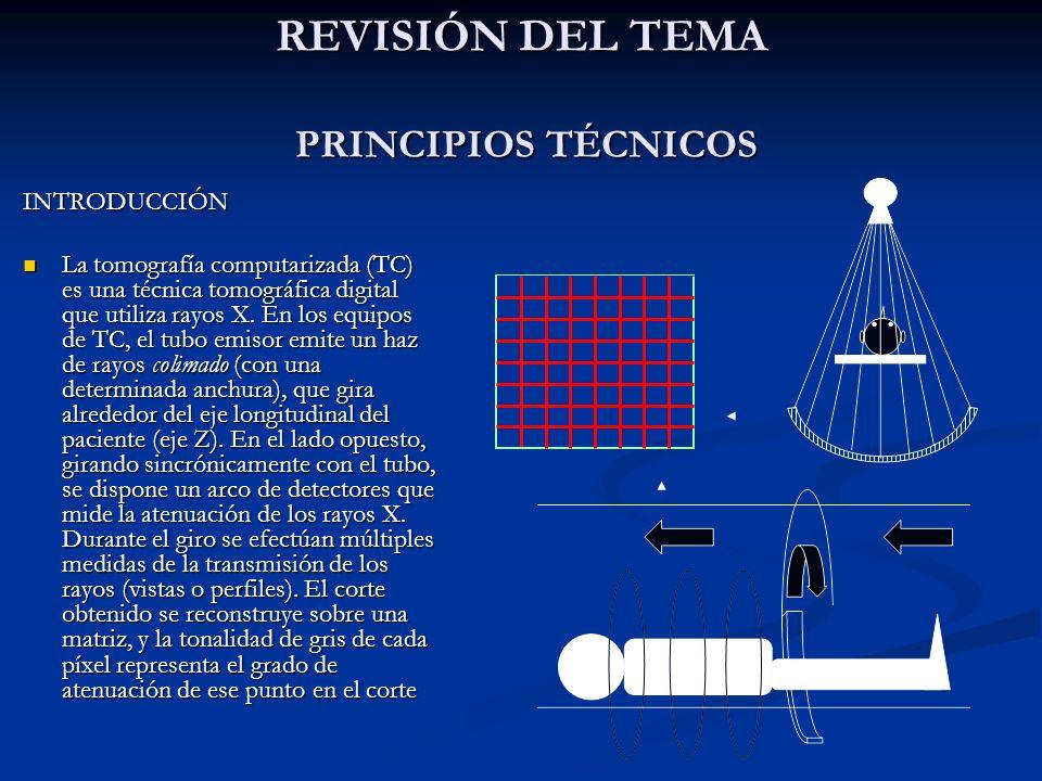 REVISIÓN DEL TEMA PRINCIPIOS TÉCNICOS