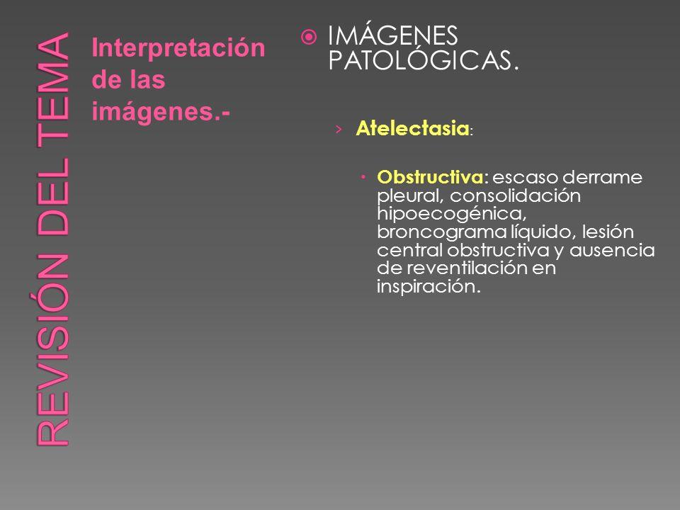 Revisión del tema IMÁGENES PATOLÓGICAS.