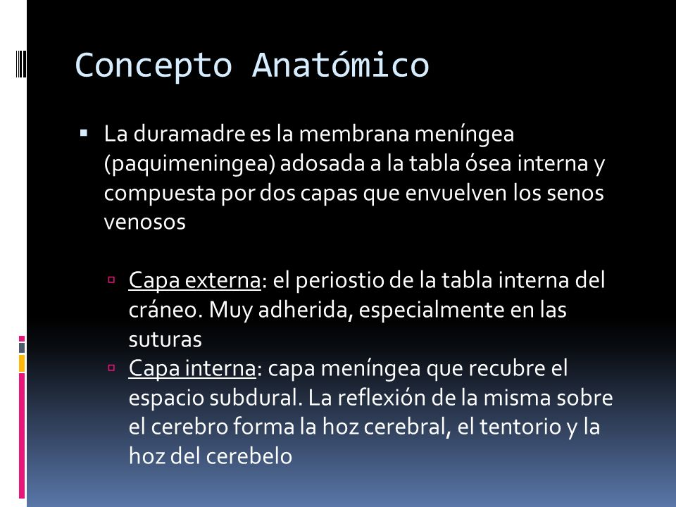Concepto Anatómico