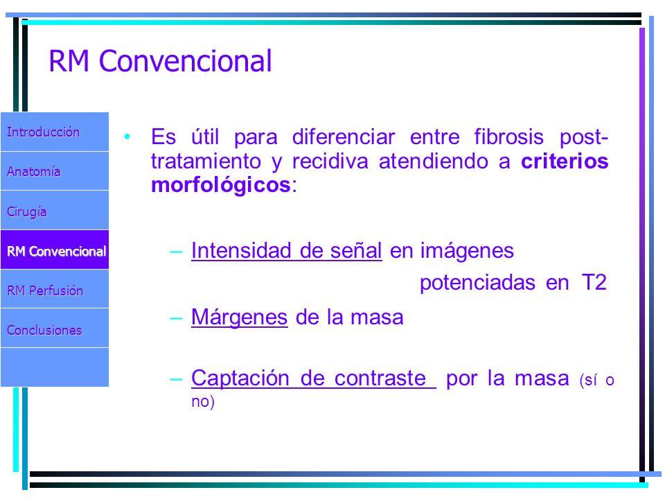 RM Convencional Introducción. Anatomía. Cirugía. RM Convencional. RM Perfusión. Conclusiones.