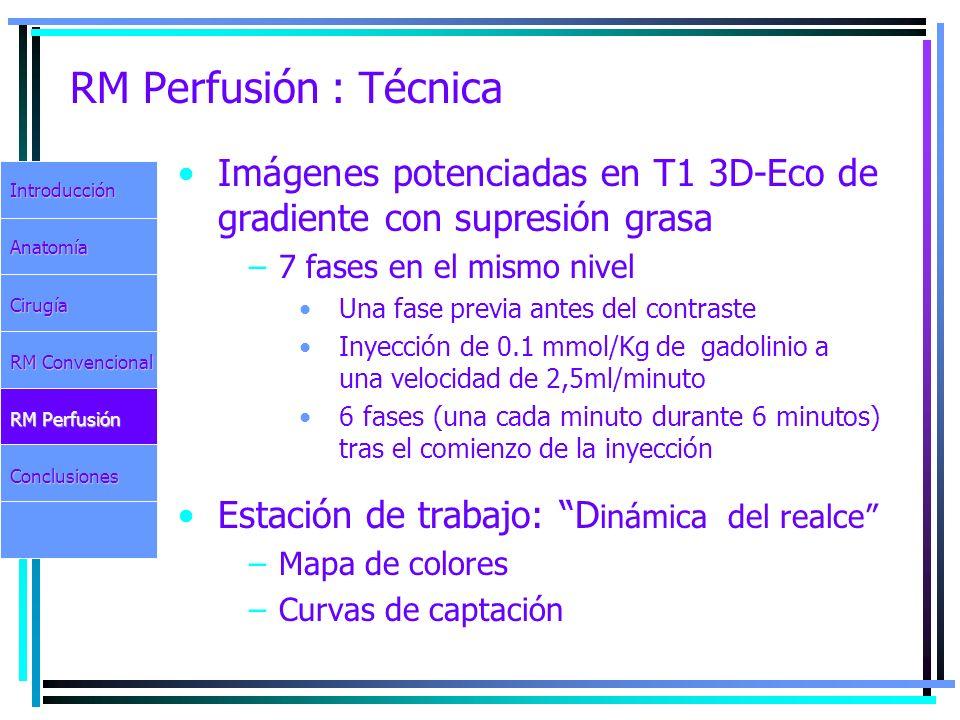 RM Perfusión : Técnica Imágenes potenciadas en T1 3D-Eco de gradiente con supresión grasa. 7 fases en el mismo nivel.