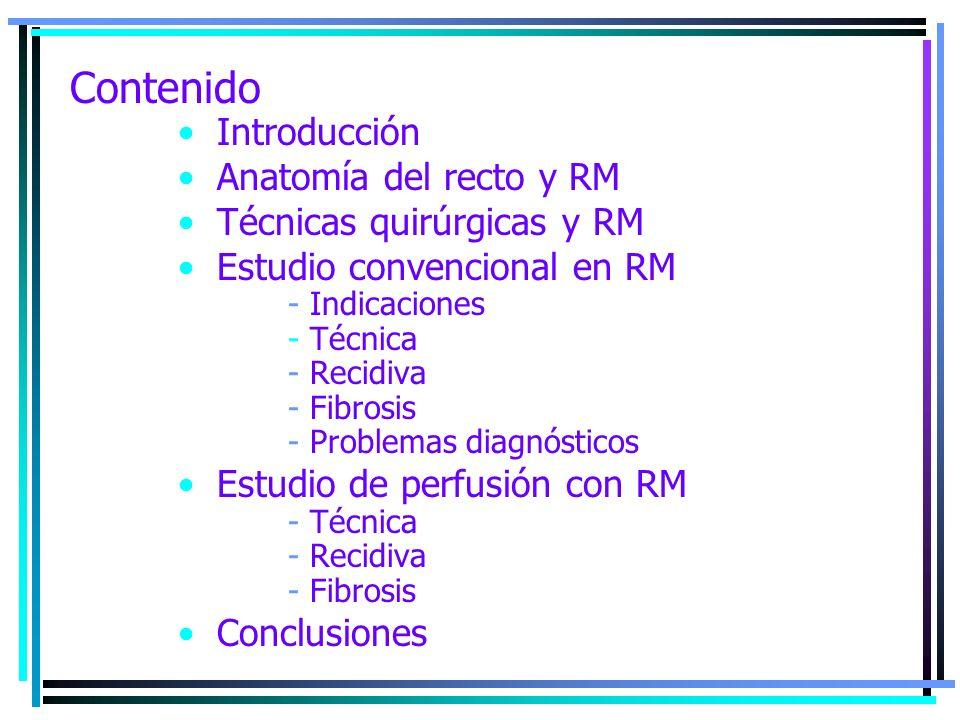 Contenido Introducción Anatomía del recto y RM