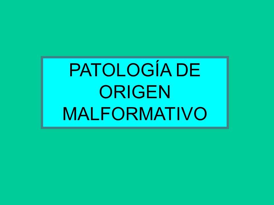 PATOLOGÍA DE ORIGEN MALFORMATIVO