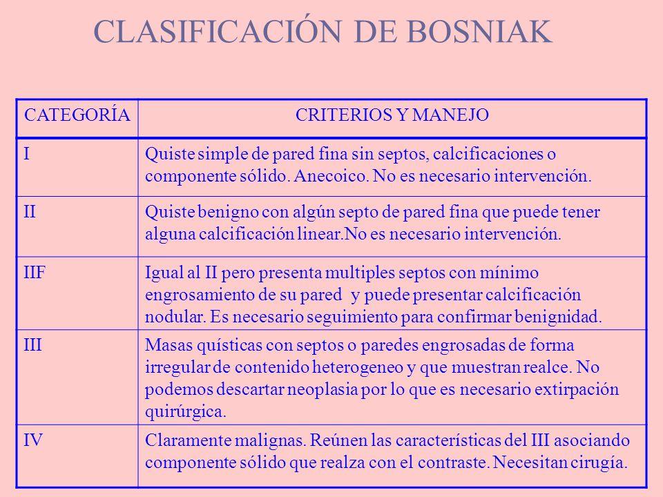 CLASIFICACIÓN DE BOSNIAK