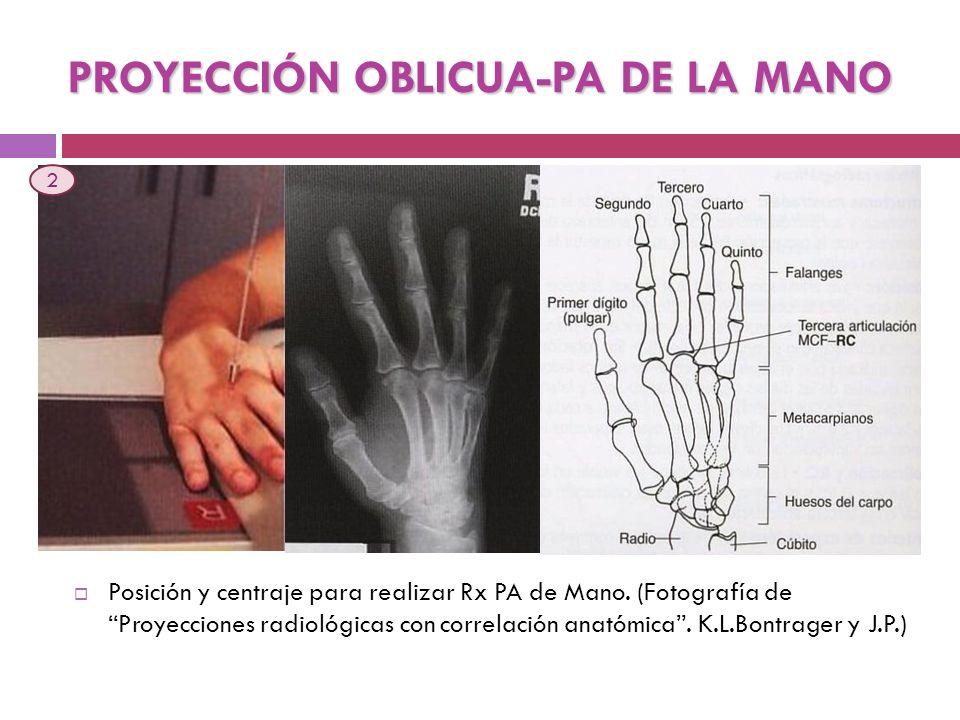 PROYECCIÓN OBLICUA-PA DE LA MANO
