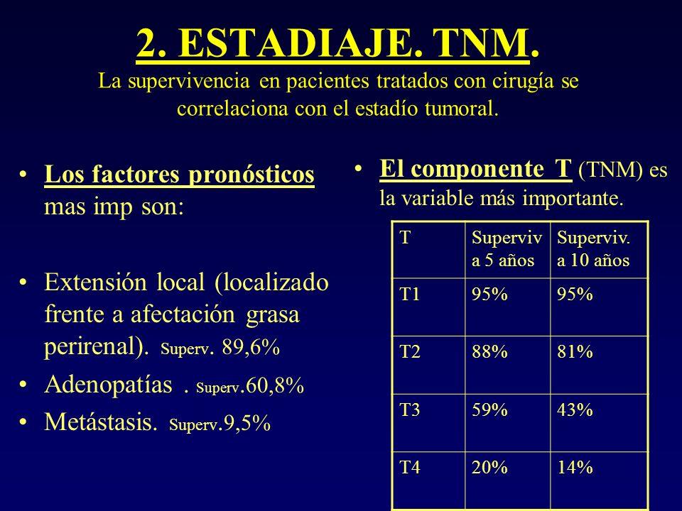 2. ESTADIAJE. TNM. La supervivencia en pacientes tratados con cirugía se correlaciona con el estadío tumoral.
