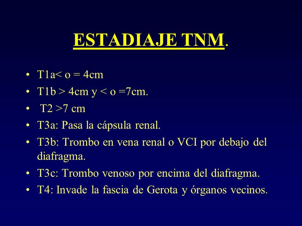 ESTADIAJE TNM. T1a< o = 4cm T1b > 4cm y < o =7cm. T2 >7 cm