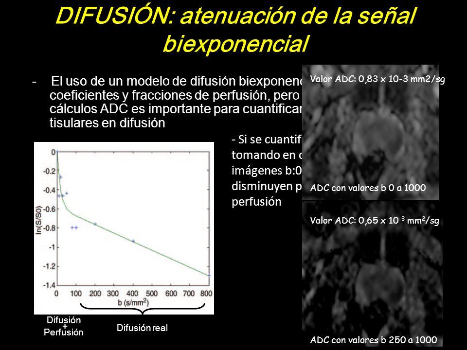 DIFUSIÓN: atenuación de la señal biexponencial