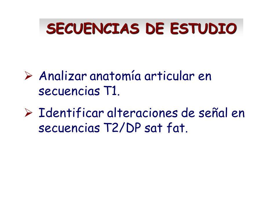 SECUENCIAS DE ESTUDIO Analizar anatomía articular en secuencias T1.