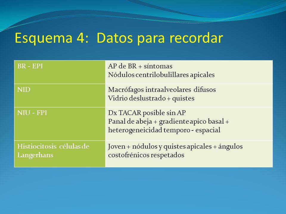Esquema 4: Datos para recordar