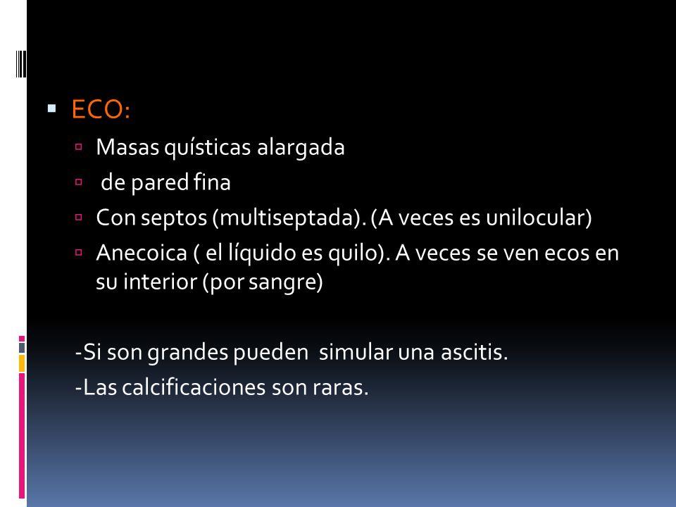ECO: Masas quísticas alargada de pared fina