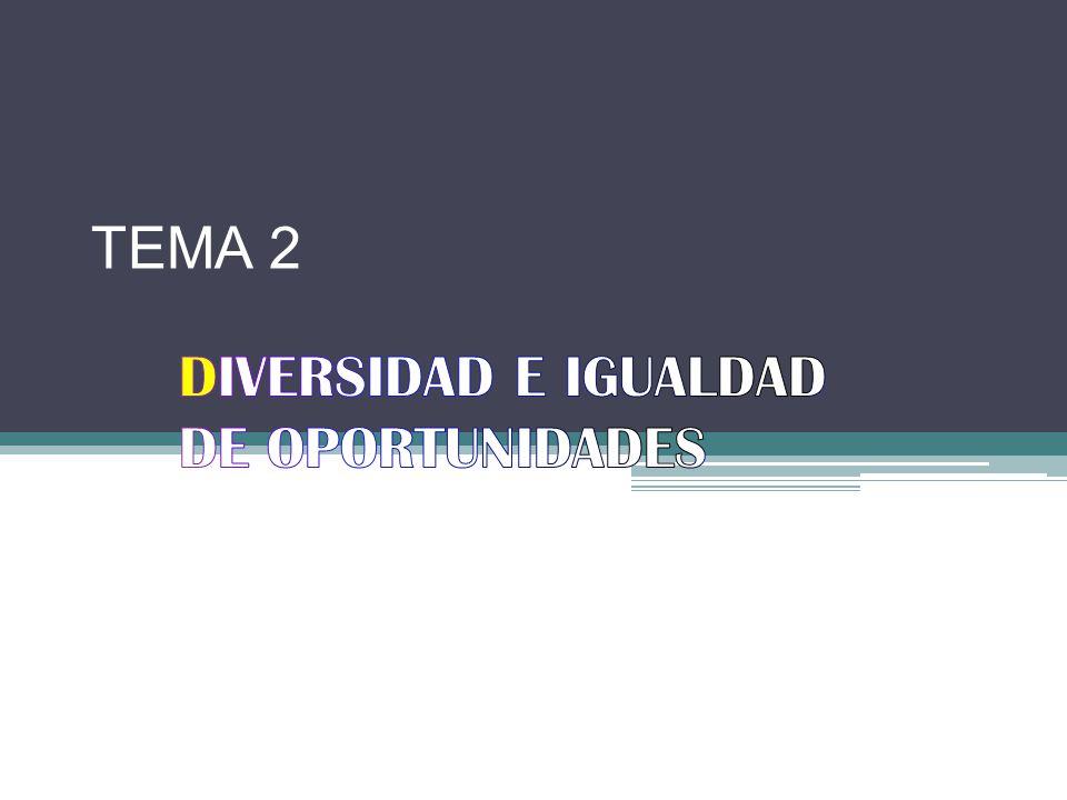 DIVERSIDAD E IGUALDAD DE OPORTUNIDADES