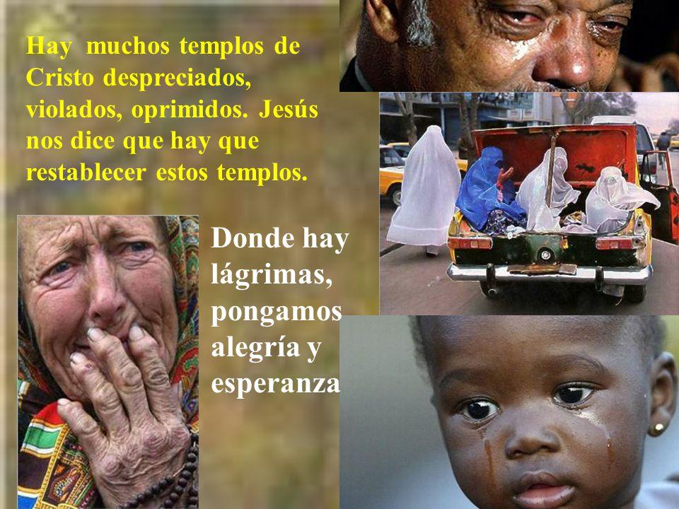 Donde hay lágrimas, pongamos alegría y esperanza