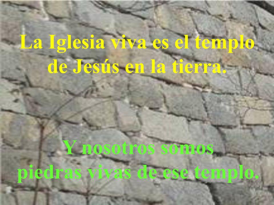 La Iglesia viva es el templo de Jesús en la tierra.