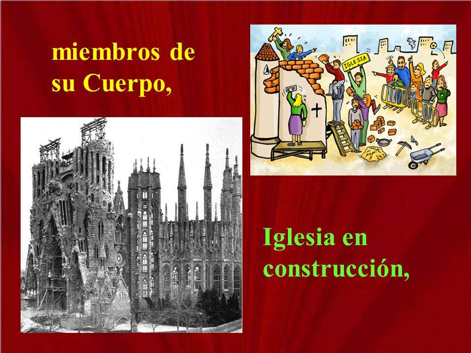 miembros de su Cuerpo, Iglesia en construcción,