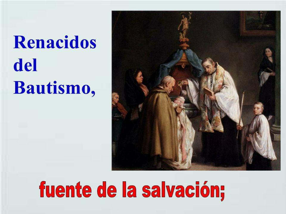 fuente de la salvación;