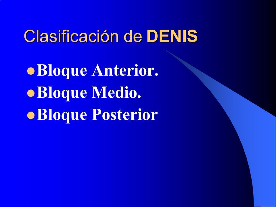Clasificación de DENIS