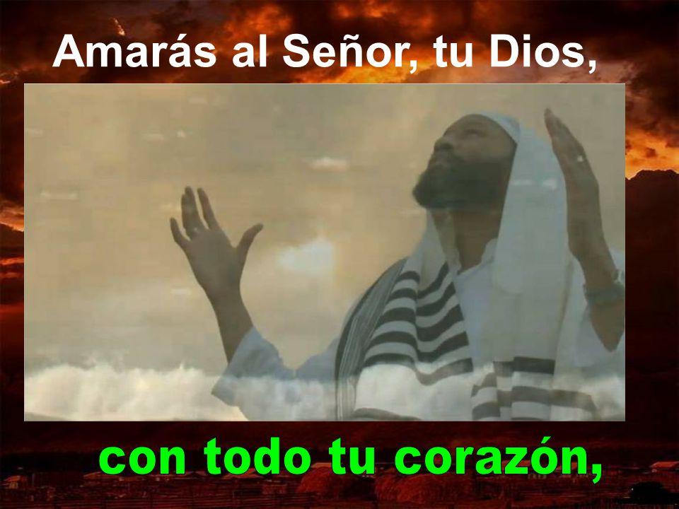 Amarás al Señor, tu Dios, con todo tu corazón,
