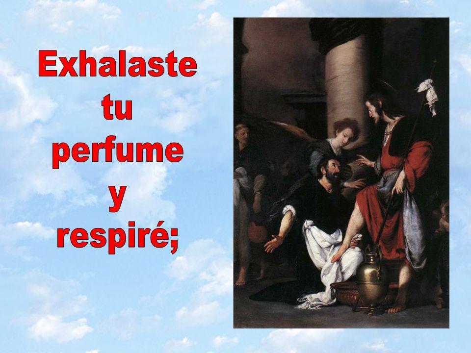 Exhalaste tu perfume y respiré;