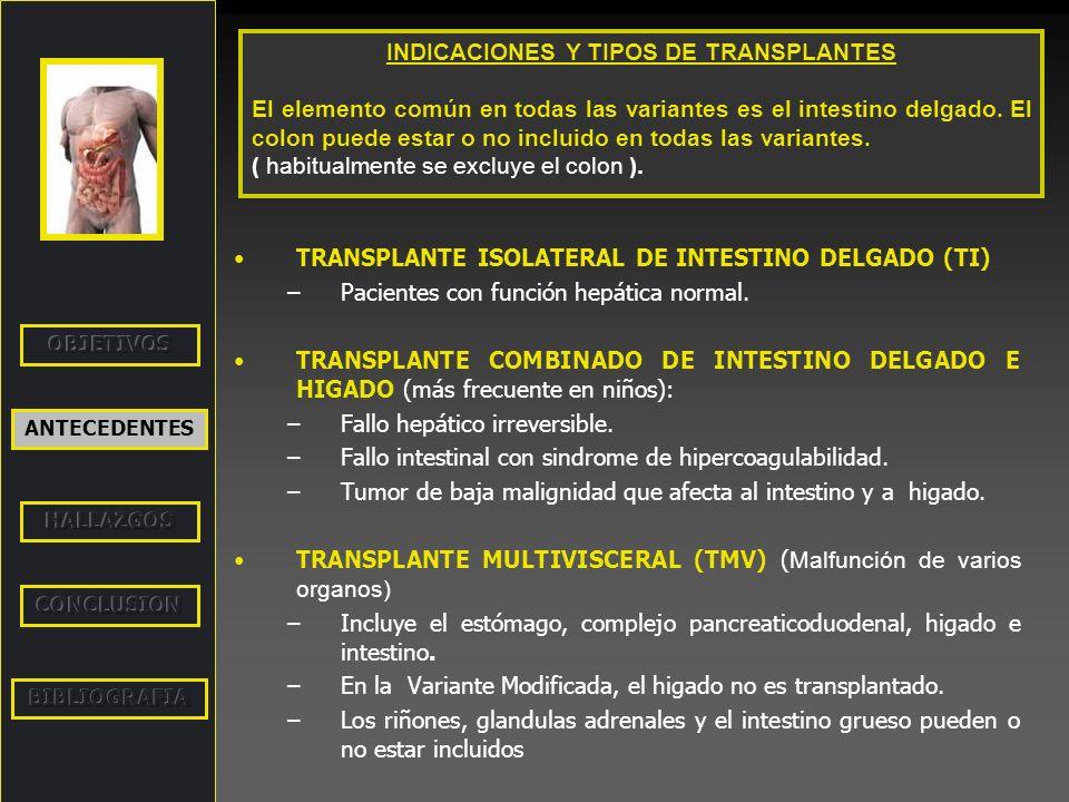 INDICACIONES Y TIPOS DE TRANSPLANTES