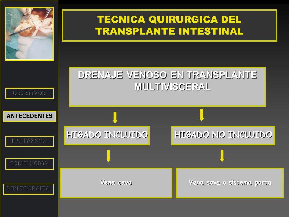 TECNICA QUIRURGICA DEL TRANSPLANTE INTESTINAL