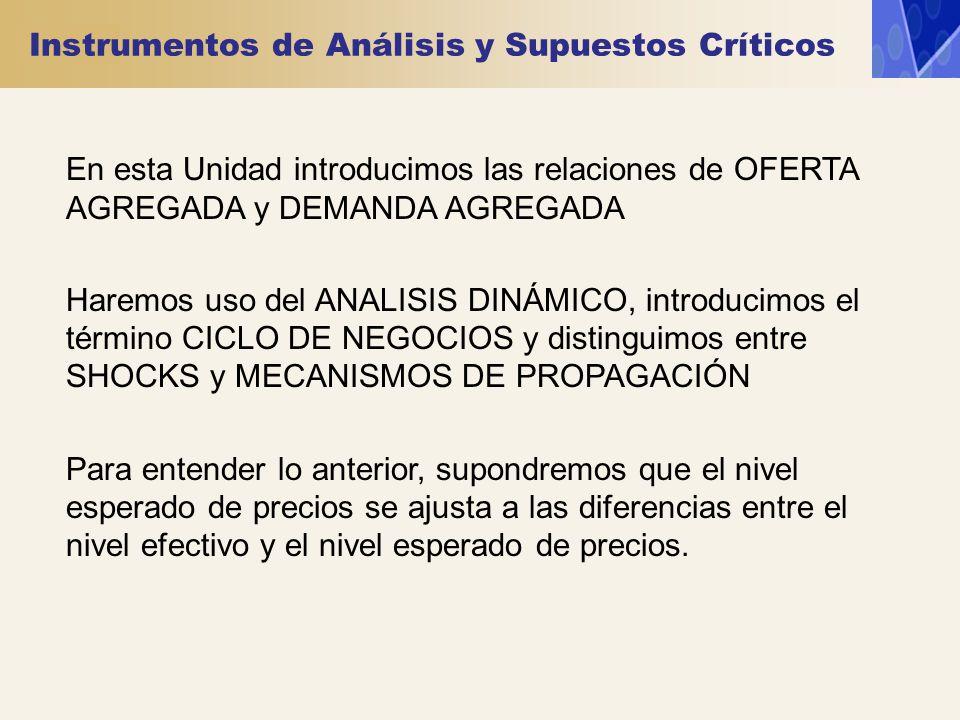 Instrumentos de Análisis y Supuestos Críticos