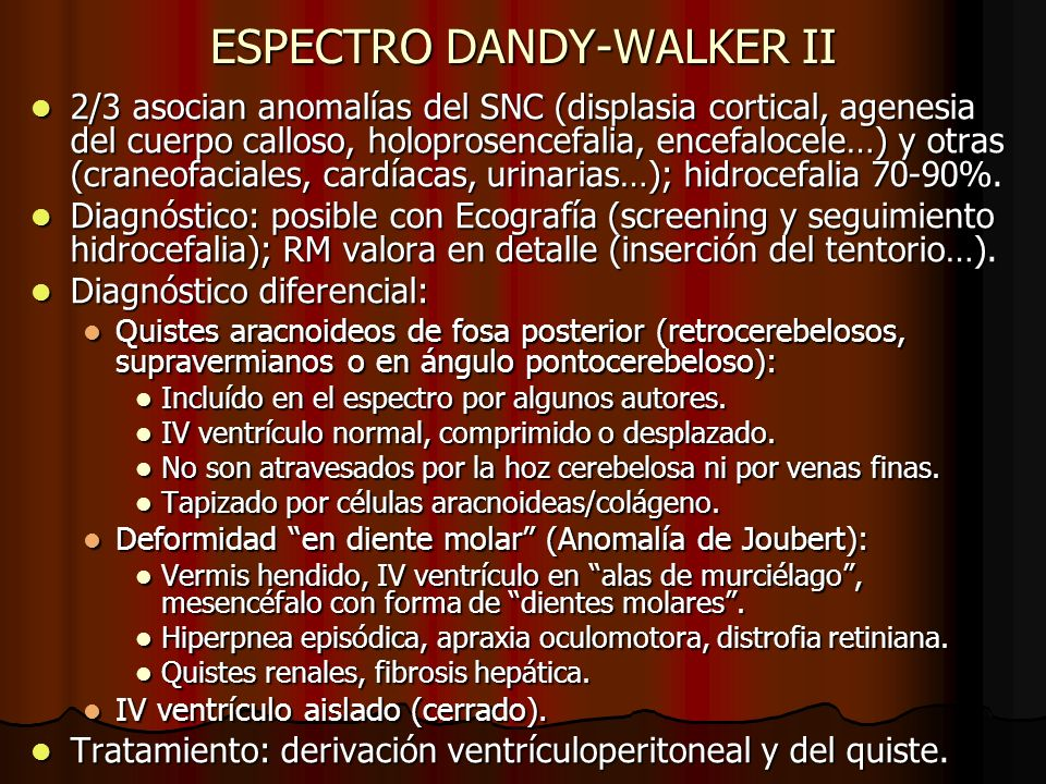 ESPECTRO DANDY-WALKER II