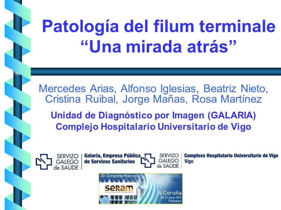 Patología del filum terminale Una mirada atrás