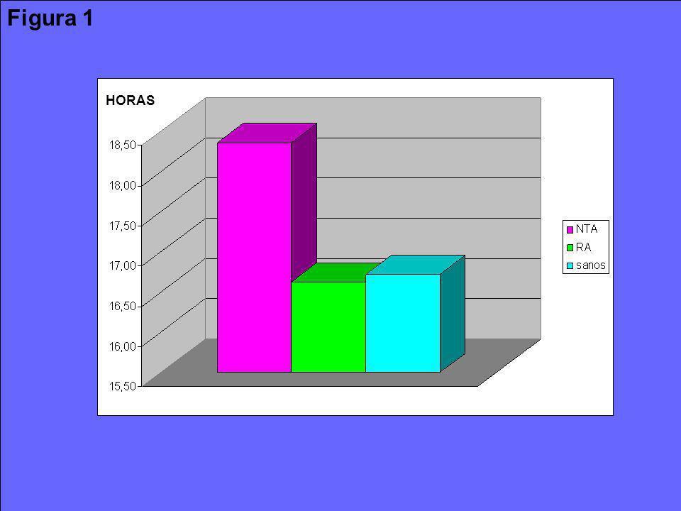 Figura 1 HORAS