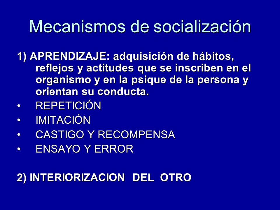Mecanismos de socialización