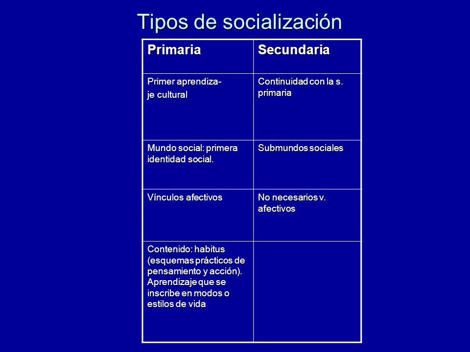 Tipos de socialización