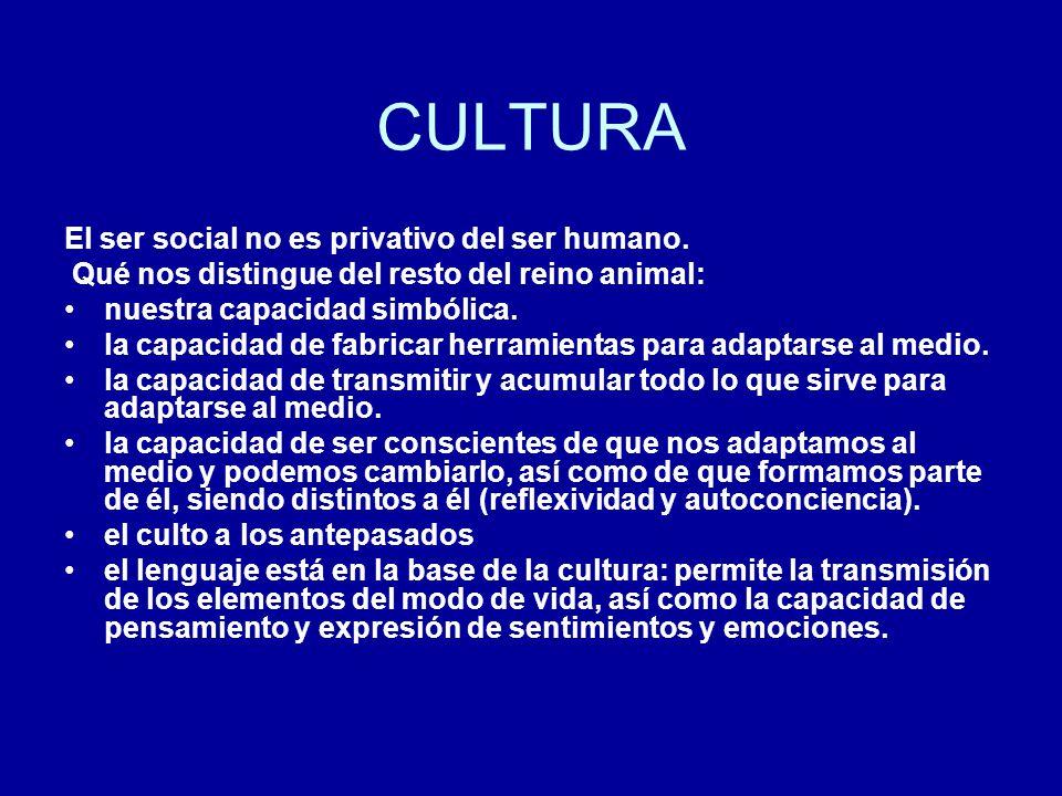 CULTURA El ser social no es privativo del ser humano.