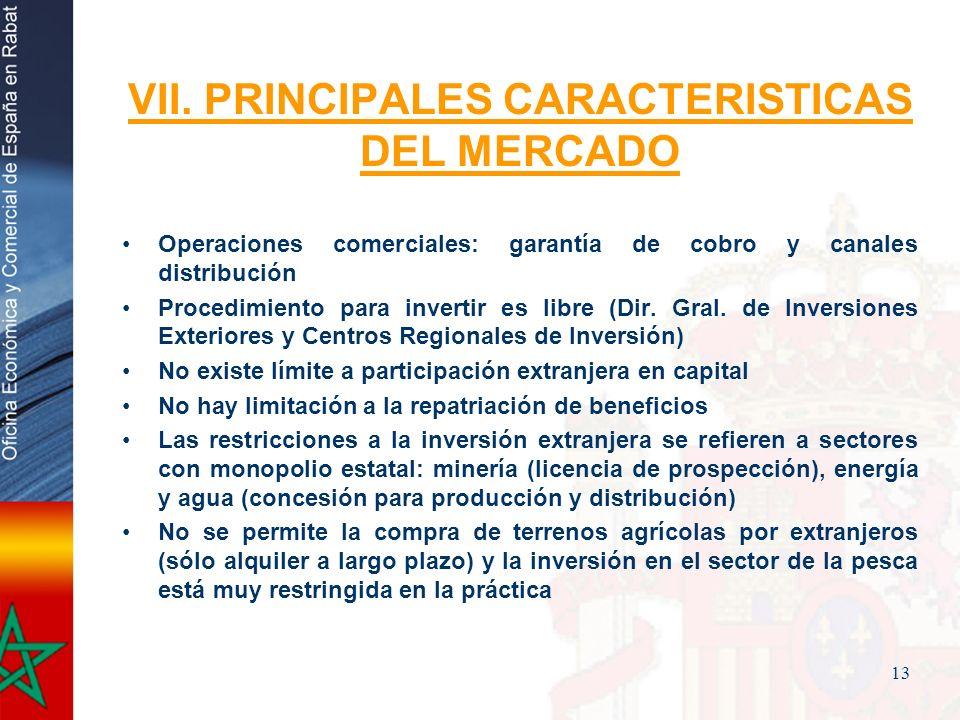 VII. PRINCIPALES CARACTERISTICAS DEL MERCADO